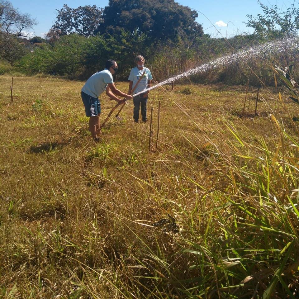 Plantadores de Água